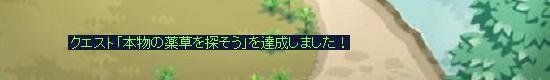 なんとしても薬草10.jpg