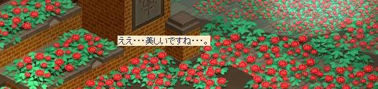 も1度庭園3.jpg
