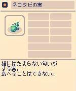 ネコタビの実.jpg