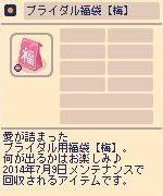 ブライダル福袋 【梅】.jpg