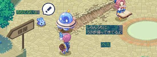 ミミちゃん救出9.jpg