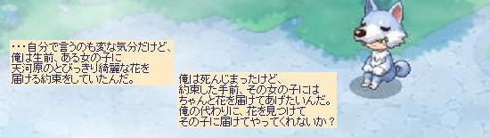 一生のお願い6.jpg