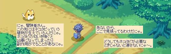 晴雨7.jpg