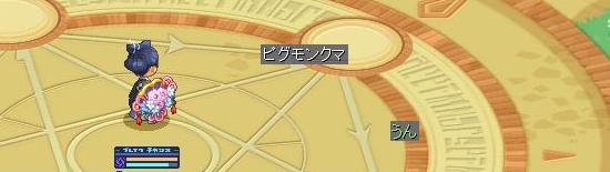 ペットパーク2014夏19.jpg