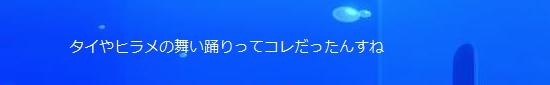 竜宮ステージ49.jpg