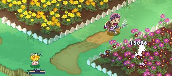 花壇ができてて13.jpg