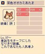 茶色オオカミあたま.jpg