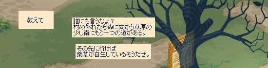 薬草の場所について17.jpg