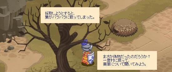 薬草の場所について30.jpg