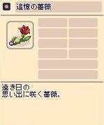 追憶の薔薇.jpg